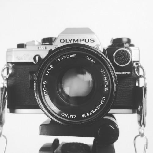 Fotograaf voor bruidsduiven